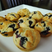 Blueberry Muffin Bliss
