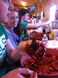 This crawfish was the biggest I've ever seen; it was more like a mini-lobster!