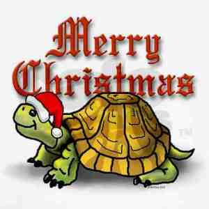 Christmas Turtle 2