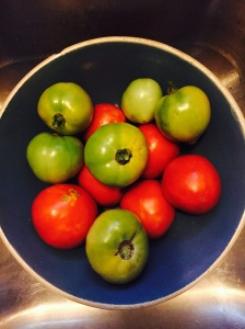 Mama Steph's recent score of homegrown tomatoes
