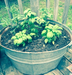 Grow some tomatoes and basil in any big container you can get your hands on
