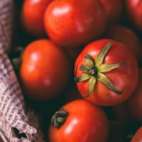 3 genius tips to keep tomatoes fresh longer + favorite tomato recipes!